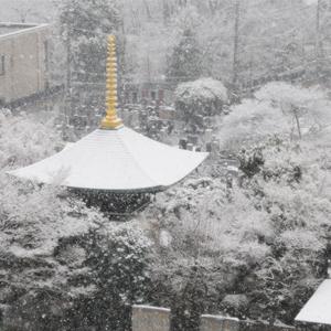 冬 最勝宝塔